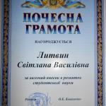 Литвин С.В. 2